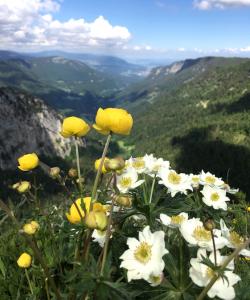 Votre rendez-vous nature et santé mensuel à l'Aubier @ Aubier  | Rochefort | Neuchâtel | Suisse