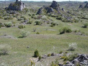 Le plateau du Larzac méridional