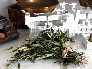 Les herbes locales, un complément indispensable à la cuisine méditerranéenne