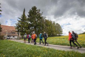 Rando-enquête @ Douanne | Twann-Tüscherz | Berne | Suisse