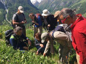 Une journée avec un herboriste @ Villars-sur-Ollon | Ollon | Vaud | Suisse