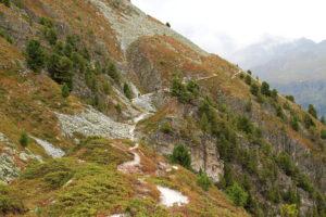 Exemple de paysage, landes acides